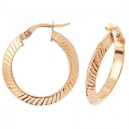 Just Gold Earrings -9Ct Earrings, ER877